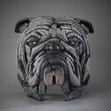 Edge Sculpture - Bulldog Bust white